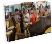 krishna Astami hyderabad